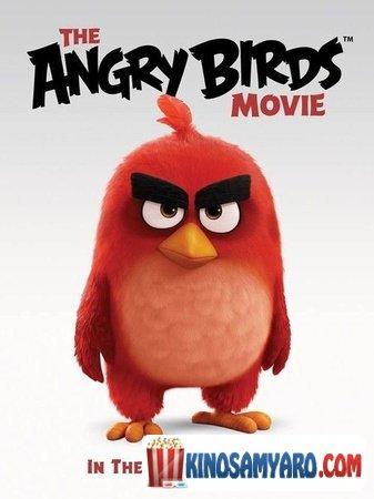 Braziani Chitebi Qartulad / ბრაზიანი ჩიტები / Angry Birds