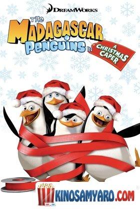 მადაგასკარის პინგვინები: ძარცვა შობას (ქართულად) / The Madagascar Penguins in a Christmas Caper