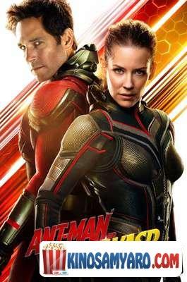 Adamiani Chianchvela 2 Qartulad / ადამიანი ჭიანჭველა 2 (ქართულად) / Ant-Man and the Wasp